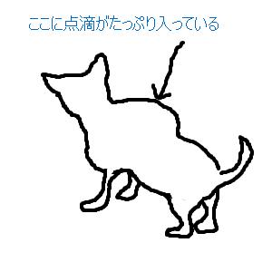 Cocolog_oekaki_2009_08_01_13_03